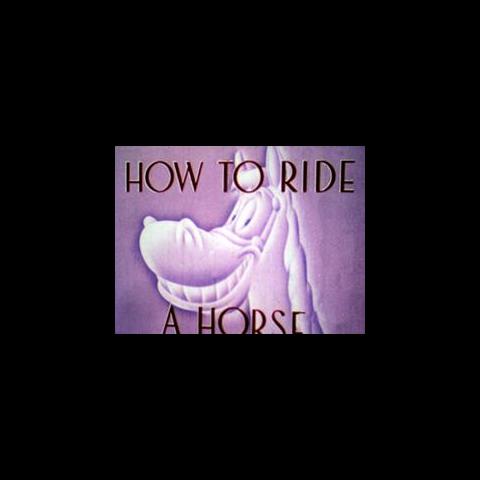 <i>Title card</i> de <i>How to Ride a Horse</i>.