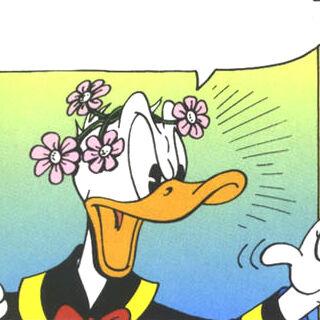 Donald coiffé de fleurs.