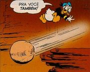 Donald Duck et un Terri-Fermien
