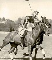 Walt Disney 1931-1935 2