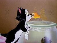 Cléo et Figaro