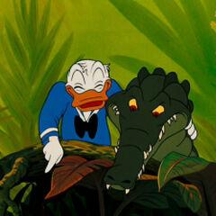 Donald avec un alligator dans <i><a href=