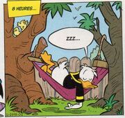 Donald Duck par Giada Perissinotto