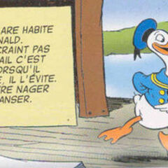 Donald dessiné par <a href=