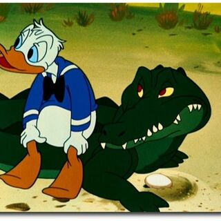 Donald avec un alligator.
