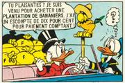 Picsou explique qu'il était venu acheter des bananiers