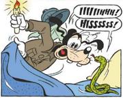 Dingo trouve un serpent dans son lit
