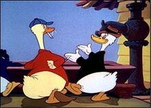 Ducky Lucky