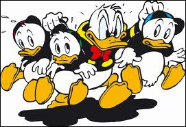 Donald colère neveux