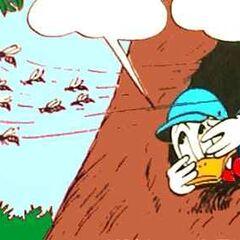 Donald avec des guêpes-rasoirs.