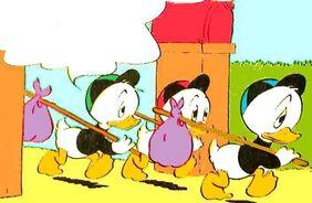 Riri, Fifi et Loulou Duck 5