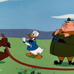Nicodème, Donald Duck et Lanature dans <i>Donald et les Abeilles</i>.