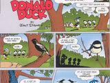 Oiseaux de malheur !