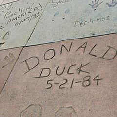 La marque des palmes de Donald sur le Grauman's Chinese Theatre.