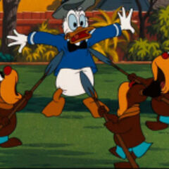 Donald et les <a href=