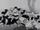 Enfants de Minnie et Mickey Mouse