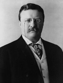 Théodore Roosevelt, 1904