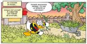 Donald se plaint de devoir arracher les mauvaises herbes