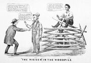 The Nigger in the Woodpile