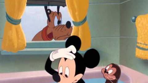 Mickey et le Phoque