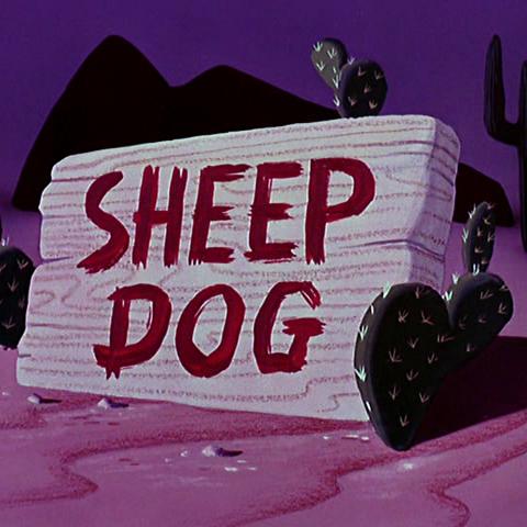 Le <i>title card</i> de <i>Sheep Dog</i>.
