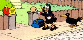 Miss Tick et Algorab, devant la maison de Donald Duck.
