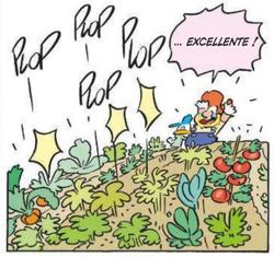 Poussée soudaine des fruits et légumes