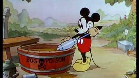 Le Jardin de Mickey