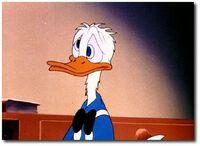 Donald fin d'Imagination débordante