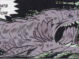 Orque Mégaptère