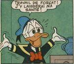 Donald par Luciano Gatto