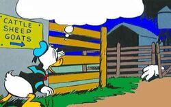 Enclos à bétail de Donaldville