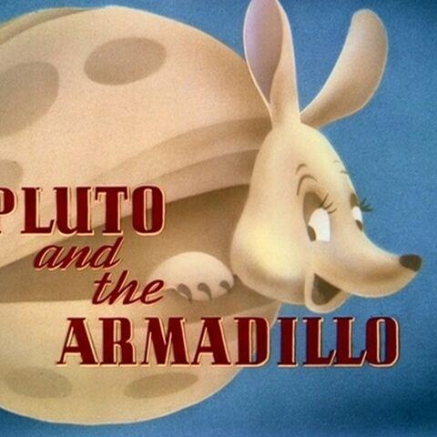 Le <i>title card</i> de <i>Pluto and the Armadillo</i>.