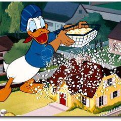 Donald dans <i><a href=