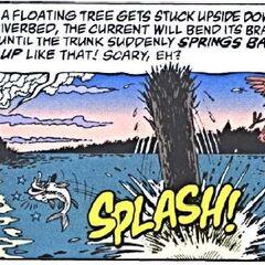 Un poisson, assommé, et un oiseau, effrayé par le tronc.
