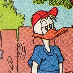 Fils de Daisy et Donald.