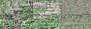 Rayman (Green Water)