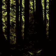 DKC - Forest SNES