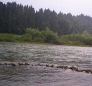 Dunajec Sromowce W