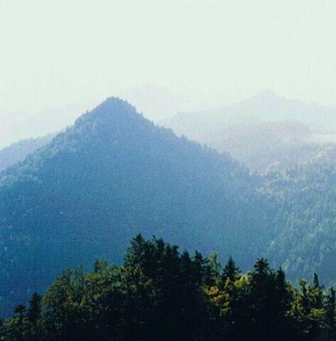 Plik:Nowa Góra.jpg