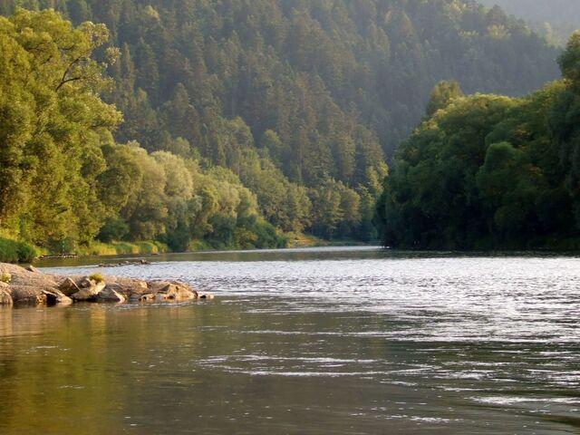 Plik:Dunajec Szczawnica.jpg