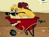 DJ Wheelbarrow Full of Nachos (character)/Appearances