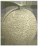 Netzballon