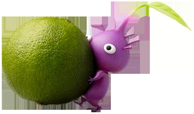Pikmin violet | Wiki Pikmin | Fandom