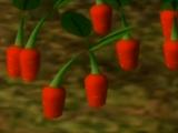 Pikpik Carrot