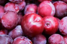 File:Real Life Plums.jpg