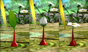 Pikmin Stages