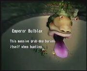 Bulblax1