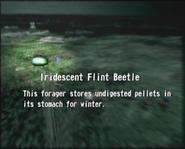 Reel13 Iridescent Flint Beetle