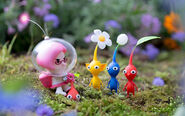 Brittany Plucking Pikmin